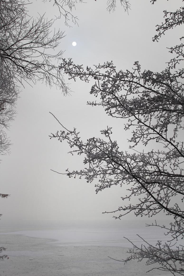 winter-hoarfrost-lake-dim-fog-sun-ice